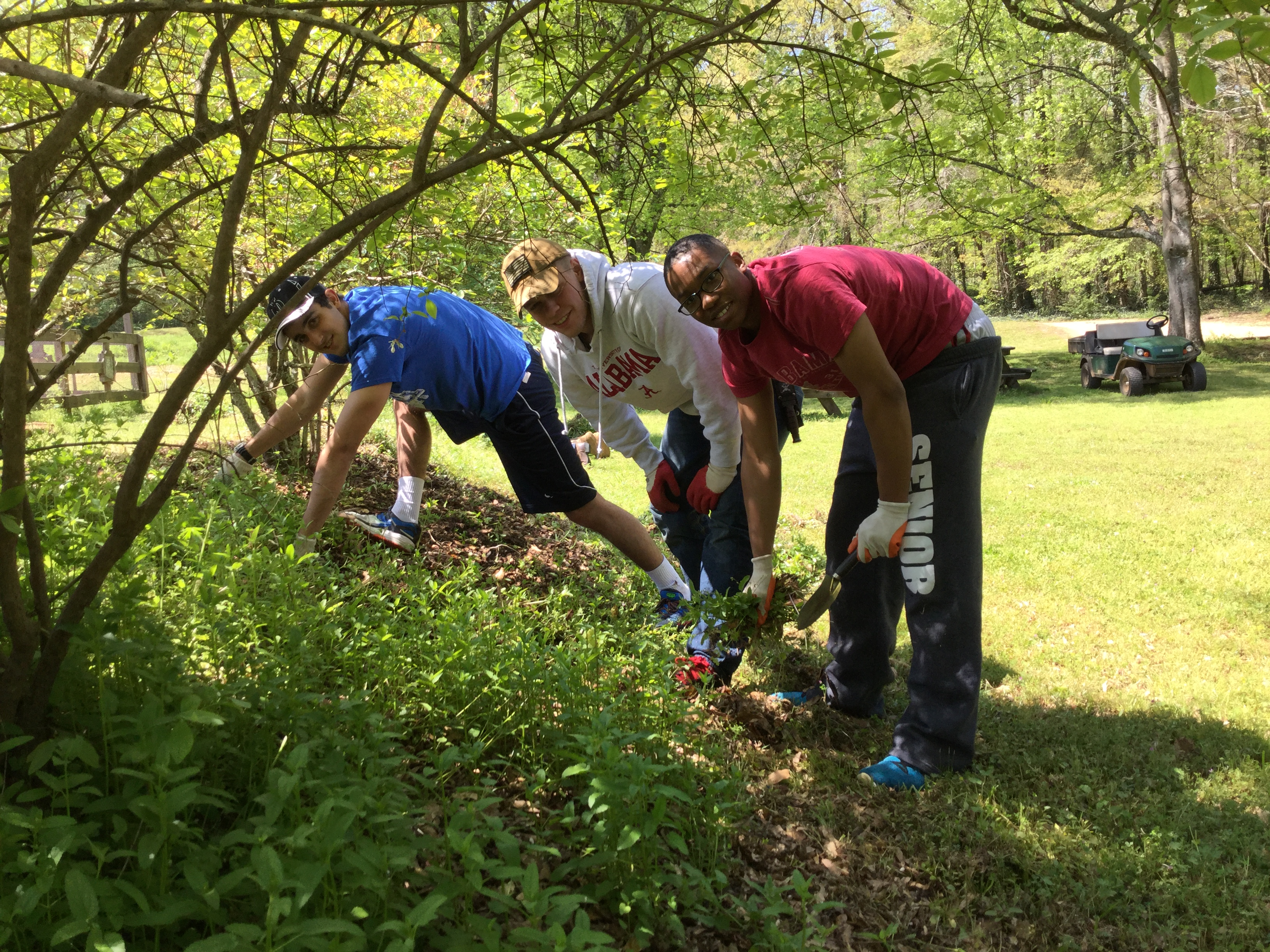 volunteers at the arboretum